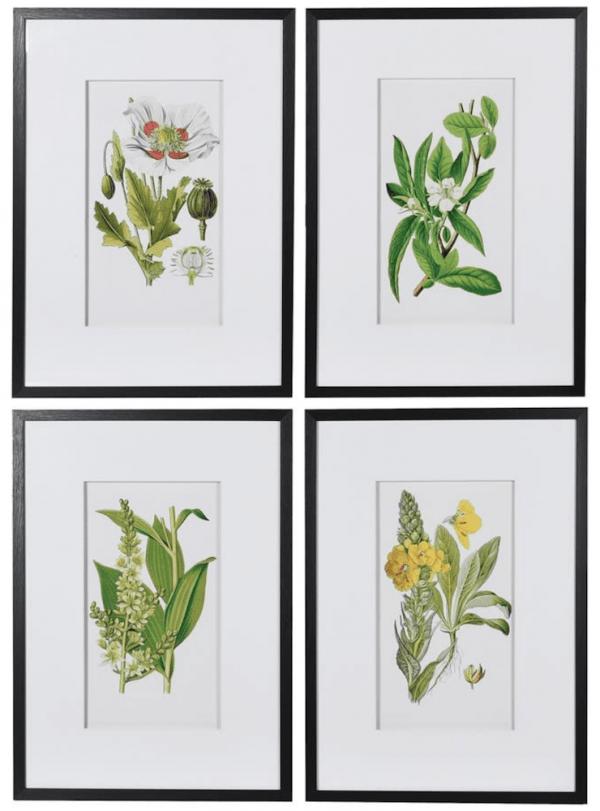 Set 4 Flower Pictures 70 x 50cm €185